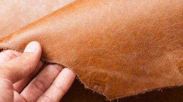 tanneur tenant du cuir pour canapé en main